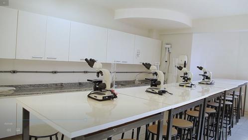 lab-coqu (2)